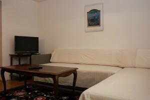 sommer apt Pinezici Krk livingroom