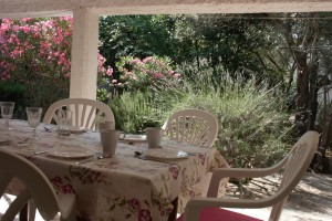 sommer apt Pinezici Krk terrace 2